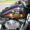 harley davidson paint by nelson signs